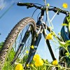 Die Qual der Wahl oder welches Fahrrad kommt für mich infrage