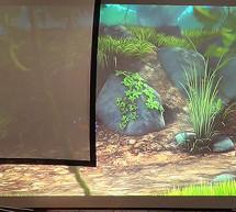 Brillante Bilder mit dem Projektor in hellen Räumen erzeugen