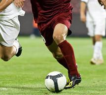 Bei der Fußball WM 2014 bekommen viele Fans wieder Wettfieber