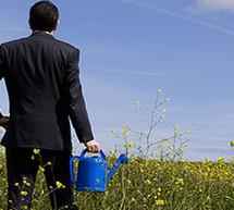 Ökologische Aktien können sehr gute Renditen erzielen